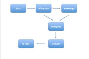 Dos dados à ação